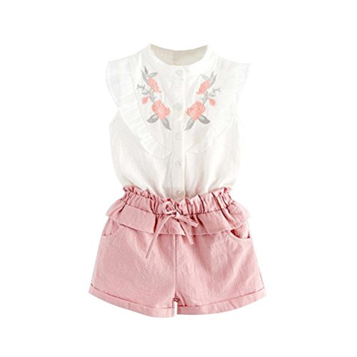 (Hatoys 2PCS Toddler Kids Baby Girl Embroidery T-Shirt Tops+Shorts Pants Outfit Set Clothes (3T,)