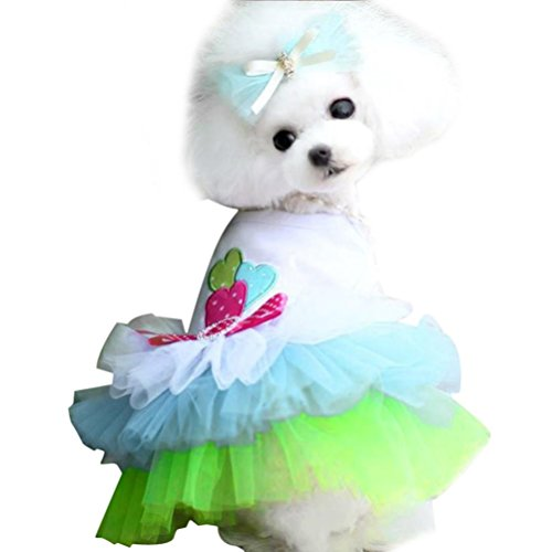 (Small Dog Girl Dress,Wakeu Lace Tutu Vest Apparel Clothes for Pet Puppy (S, Green))