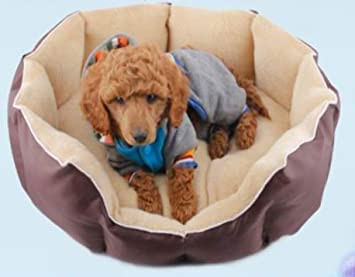 Amazon.com: La Basura Taidi perro pequeño perro casa caseta ...