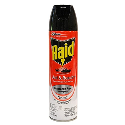 Raid Ant & Roach 17.5oz Unscented , Case of 48