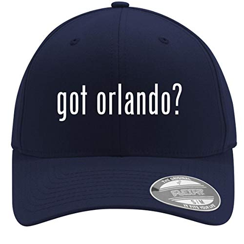 got Orlando? - Adult Men's Flexfit Baseball Hat Cap, Dark Navy, Small/Medium