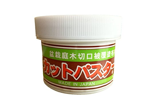 CUTPASTER Bonsai Cut Paste/Bonsai Pruning Compound 160g (GLAY)