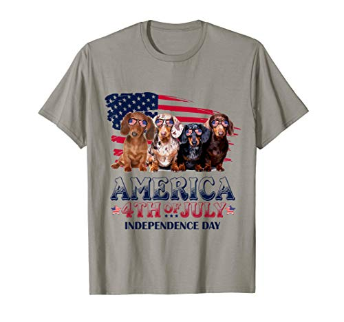 Dachshund America 4th Of July Independence Day T-Shirt