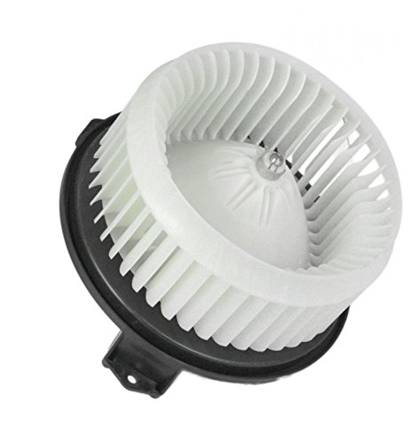 Heater A/C Blower Motor w/Fan Cage for Compass Accord Edge DTS Pilot MKX RDX TSX A/c Blower Fan