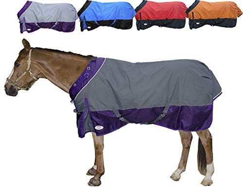 Derby Originals Windstorm Series Reflective Safety 1200D Ripstop Waterproof Nylon Horse Winter Turnout Blanket with 300g Insulation - Two Year Limited Manufacturer's Warranty, Charcoal/Purple