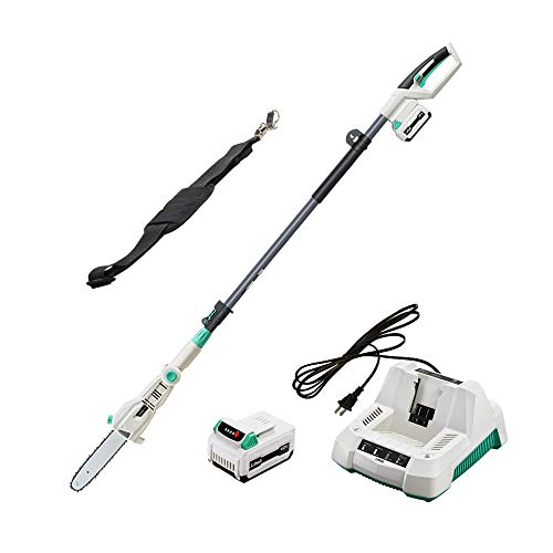 - LiTHELi 40V 10 inches Cordless Pole Saw with 2.5AH Battery and Charger