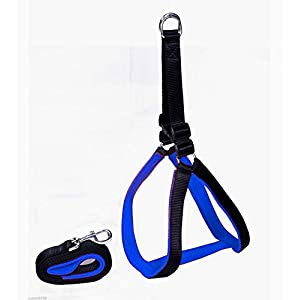 Smarty Pet Nylon with Blue Padding Dog Harness (Black, 75 Inch, Small)