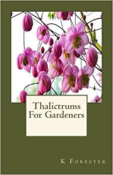 Thalictrums For Gardeners
