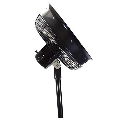 3 Speeds 18 inch Black Outdoor//Indoor Oscillating Shrouded Pedestal Fan