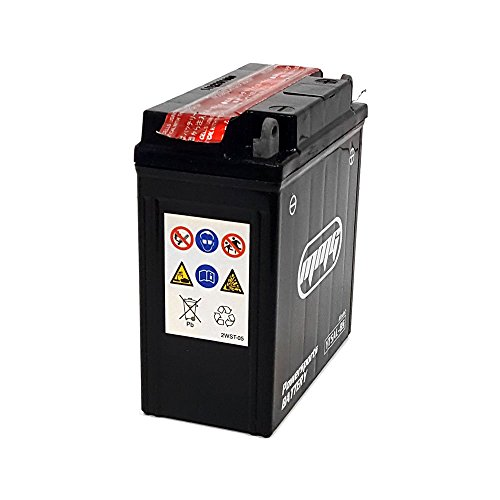 maintenance free battery ytx7e bs motorcycle harley. Black Bedroom Furniture Sets. Home Design Ideas