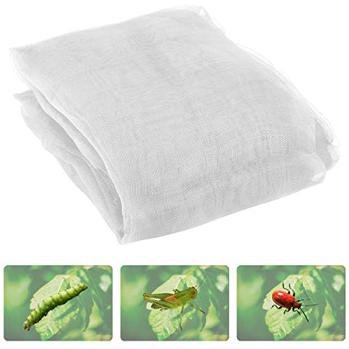 Anphisn 2 Pack Garden Insect Screen Insect Barrier Netting Mesh Bird Netting 9.8ft × 6.5 ft (White) (Insect Mesh Netting)