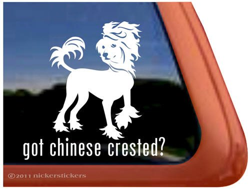 Got Chinese Crested? Dog Vinyl Window Decal Sticker