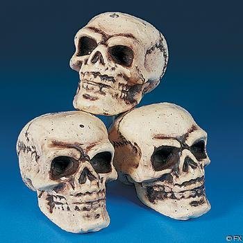 Fun Express Halloween Skeleton Skulls by
