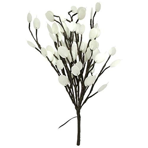 Light Garden 01757 - #184139 20