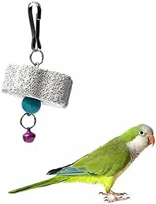 gootrades Parrot pájaro ardilla Chew Bite rascador Bell dientes piedras de amolar juguete (Pack de 2): Amazon.es: Productos para mascotas