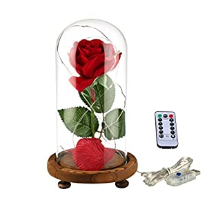 YSBER Beauty & The Beast Red Silk Rose and LED Light with Fallen Petals in Glass Dome on a Wooden Base for Lover, Mother, Girlfriend 66