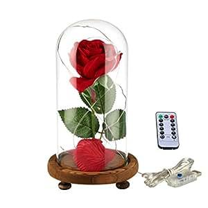 """YSBER Rosa roja de seda, pétalos caídos y luz led dentro de una cúpula de cristal y sobre una base de madera, diseño de """"La Bella y la Bestia"""""""
