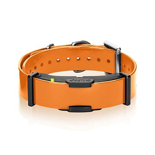Dogtra ARC Additional Receiver Slim Ergonomic 3/4-Mile Remote Dog Training E-Collar with 127-Level Precise Control via LCD Screen