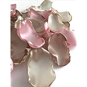 Blush pink ivory and champagne 25 flower petals wedding decor wedding aisle decor baby shower decor bridal shower decor 4