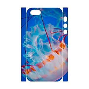 D-Y-Y8068958 3D Art Print Design Phone Back Case Customized Hard Shell Protection Iphone 5,5S