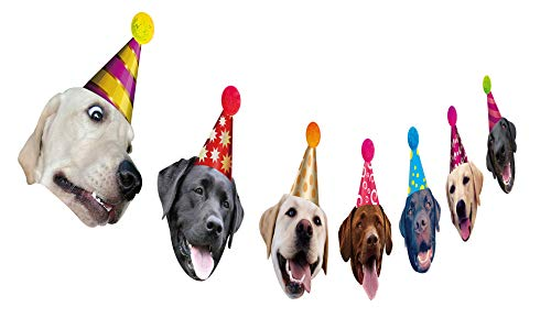 Dogs Birthday Garland, Funny Labrador Face Portrait Birthday Banner, Dog Bday Bunting Decoration]()