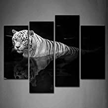First Wall Art - 4 Panel Wall Art Black And White White Tiger Standing In Water In Black Background Painting Pictures Print On Canvas Animal The Picture For Home Modern Decoration piece (Stretched By Wooden Frame,Ready To Hang)