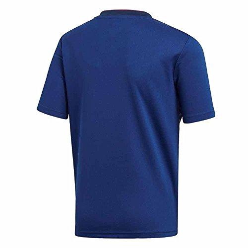 Japan team shirt