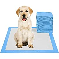 Rag & Sak® Pet Pee Pads Disposable Absorbent Quick Drying Leak proof Pee Pads for Potty Training For Pets (50 Pcs…
