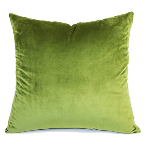 SLOW COW Velvet Solid Throw Pillow Cover Decorative Cushion Cover 18x18 Inches, Green