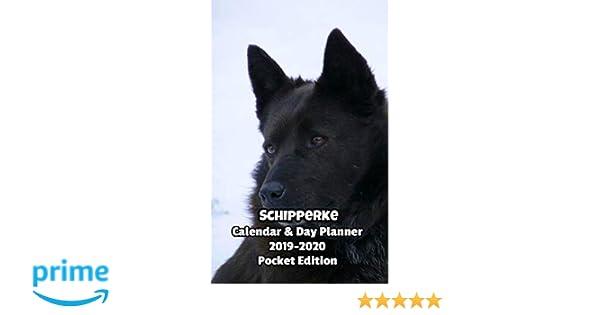 Schipperke Calendar 2019