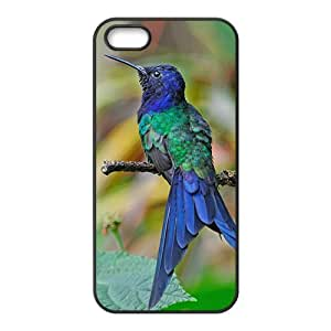 The Flying Hummingbird Hight Quality Plastic Case for Iphone 5s