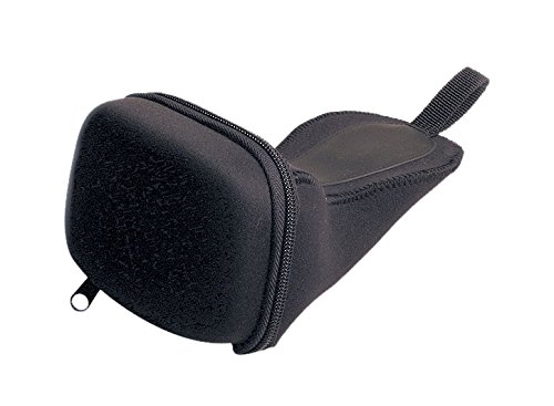 Garmin Carrying Case for C300 Series (010-10704-00) (Garmin Streetpilot Gps Units)