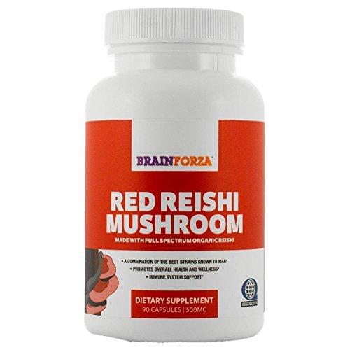 red mushrooms - 8