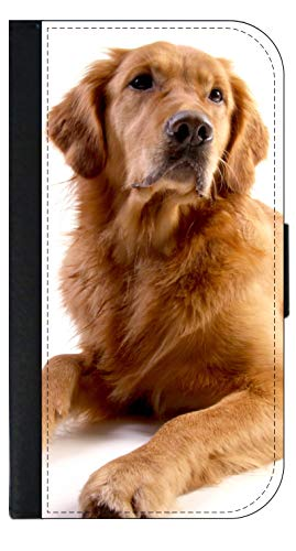 Golden Retriever Dog Design Wallet Phone Case for The iPhone 10 XR - iPhone 10 XR Wallet Case - iPhone XR Wallet Case