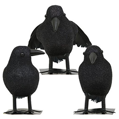 Black Feathered Small Halloween Crows – 3 Pc Black Birds