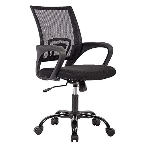 Executive Adjustable Swivel Chair for Back Pain