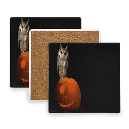 Large Square Drink Coasters,Owls Birds Pumpkin Halloween Ceramic Thirsty Stone With Cork Back Cup mats Protect Your Furniture From Spills, Scratches, Water Rings and Damage 2 pcs -
