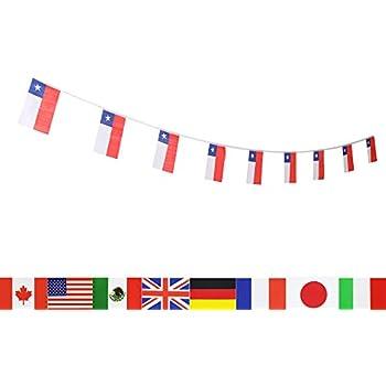 amazon com chile flag chilean flag lovevc 100 feet national