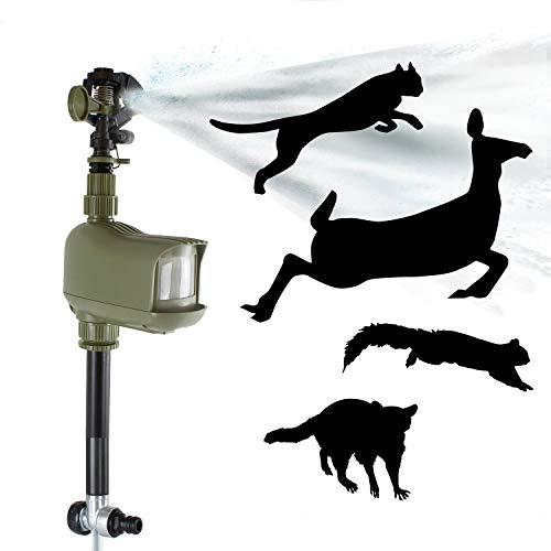 Havahart 5277 Motion-Activated Animal Repellent & Sprinkler, 1 Pack, Green (Houzz Patio Covers)
