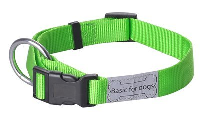 Wouapy Basic Line Collar for Dog, Green Collar in 12 mm Width for Neck of 20/30 cm
