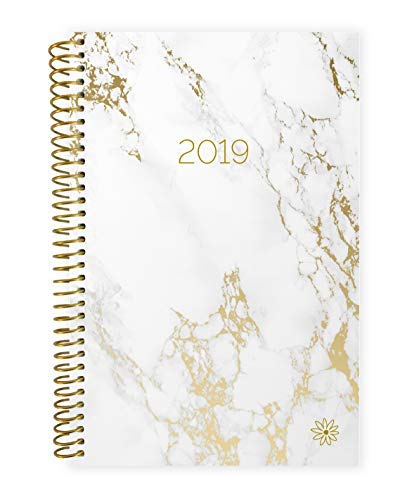 bloom daily planners 2019 Calendar Year Day Planner - Passion/Goal Organizer - Monthly and Weekly Dated Agenda Book - (January 2019 - December 2019) - 6 x 8.25 - Marble