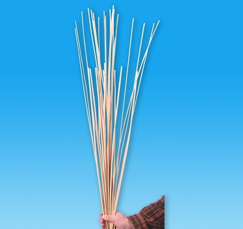 .25'' X 36'' REED STICK, Case of 50 by DollarItemDirect