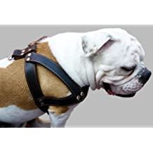 "Black Leather Dog Harness, Large. 28""-34"" Chest, 1.5"" Wide Straps, Rottweiler Bulldog"
