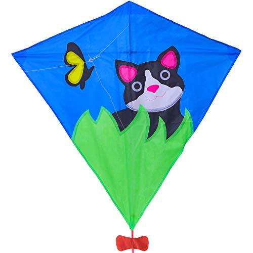 Zhuoyue Diamond Kite for Kids and Adults, Single Line Easy Flyer Kite for Beginner with Long Tail, Funny Beach Toys and Outdoor Games ()