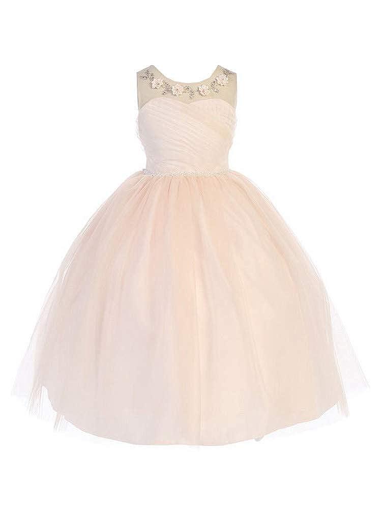 899bf577c6d38 Amazon.com: Bijan Kids Little Girls Blush Floral Appliques Tulle Flower  Girl Dress 2-6: Clothing