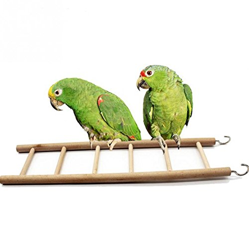 Goonpetchkrai.rapat7498 Bird Wood Perches for Parrots Birds Toy Ladders Swing Climbing 3/4/5/6/7/8 Ladder Toys Supplies by Goonpetchkrai.rapat7498