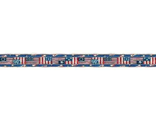 Teacher Created Resources Patriotic Straight Border Trim from Susan Winget, Multi Color (4631)
