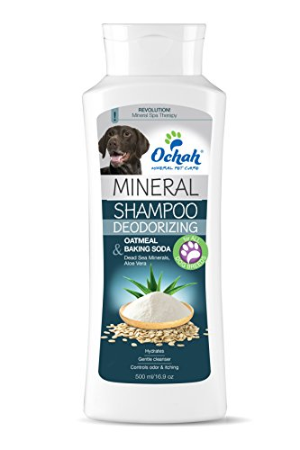 Ochah All-Natural Mineral Salt Pet Shampoo- DEODORIZING with Oatmeal, Baking Soda, Dead Sea Minerals & Aloe Vera- Gently Deodorizes & Cleans- 16.9oz