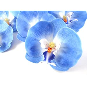 "(50) Blue Phalaenopsis Orchid Silk Flower Heads - 3.5"" - Artificial Flowers Heads Fabric Floral Supplies Wholesale Lot for Wedding Flowers Accessories Make Bridal Hair Clips Headbands Dress 89"