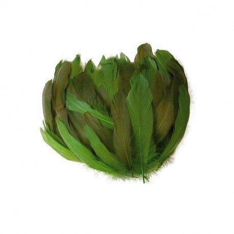 Piume Pinne di oche Toni verdi, envrion 20g, 3colori assortiti